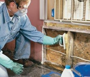 water damage prevention in a home after a flood